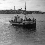"""""""Brødrene"""", T96TS, i Grøtsundet på slutten av 1950 tallet"""